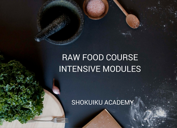 RAW FOOD COURSE INTENSIVE MODULES (1)